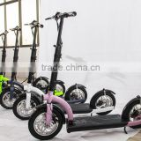 New 300w 10.4A Li battery foldable light weight electric scooter
