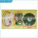sound module for greeting cards/music module/recording module/USB modules/motion sensor module/cheap sound module for cards