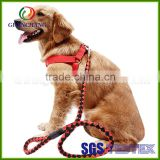 China wholesale inovation pet products 2016 dog training collar and leash eco-friendly rope dog running leash