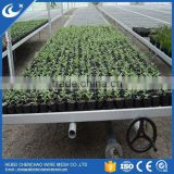 Hot selling galvanized growing greenhouse rolling benches systems for commercial greenhouse