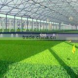 agricultural greenhouse/greenhouse/greenhouse equipment,greenhouse structure,garden shed,industrial greenhouse