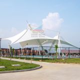 Economic and practical tensile membrane structure for canopy tent/tent and awning fabric/polyester canvas fabric