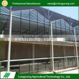 Wholesale eco-friendly venlo structure glass green houses for tomatoes