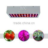 Infrared Light Growing Plants Pro Plant Grow Light 300W, Lighted Artificial Flower Plant