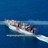 project logistic service and CIQ agent to Damietta of Egypt from China Shenzhen Guangzhou Shanghai