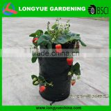Garden tools leader cheap Wholesale PE strawberry grow bag , strawberry Planter ,Pop-Up strawberry planter bag