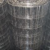 Animal Cage Steel Wire Mesh 2x4 Wire Mesh