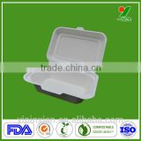 Biodegradable compostable eco-friendly hot sales paper food container