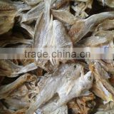 100%Dried Salted Fish
