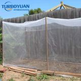 Agriculture greenhouse anti aphid insect protection net for tunnel farming