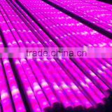 600w led grow light hydroponic growing tube rock wool cubes 4""