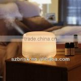 HomeGardenWorld 500ml Aroma Diffuser Ultrasonic Humidifier LED Color Changing Lamp Light Lonizer