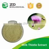 Water Soluble Milk Thistle Extract Silymarin