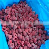 High Quality Frozen Raspberry Fruit/Whole IQF Raspberries