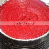 Canned Tomato Paste 28-30% brix