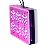 Cidly A6 LED grow light 210W Indoor garden led green house grow led light/plant growth promoter/full spectrum