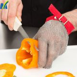 Best Cut Resistant Stainless Steel Metal Mesh Working Safety Gloves
