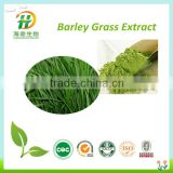 100% Pure Barley Grass Powder