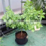 Fabic Plant Grow Bag Plant Pot