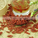 Export level Chinese Wolfberry nutrition Good Quality Ningxia 280 Grains/50G Dried Goji Berry for sale Ningxia Goji dreid fruit