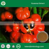 Natural Guarana extract 10% 20% Caffeine, Bulk Guarana seed extract powder, Paullinia cupana P.E. powdered Guarana