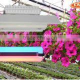 200w new product jiangsu red blue color full spectrum plant light