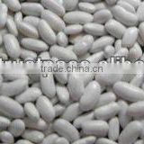 Dry white kideny beans ( sizes 180-200 / 200-240/ 240-260)