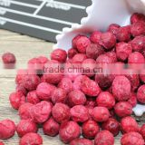 Freeze Dried Crunchy Cranberry Whole