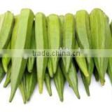 water-soluble powdered organic okra extract