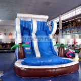 Inflatable Water Pool Slide for amusement park