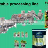 /hot sale leafy vegetable cutting /salad /IQF vegetable processing line/fruit and vegatble washing line