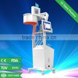 650 nm diode laser hair growth machine /laser hair loss treatment machine/hair growth laser+ CE approved
