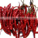 EXPORT QUALITY DRIED RED CHILI