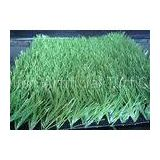 50mm 11000dtex Football , Soccer Synthetic Turf Grass High Density 10500
