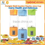 Made in China High Quality Mini USB Electric Fruit Juicer Smoothie Maker Blender Cup Hand Blender