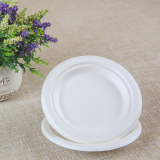 sugarcane bagasse disposable biodegradable paper plate