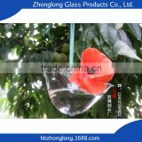Factory Price Top Brand Glass Transparent Beautiful Glass Vase