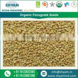 Enhance the Flavor and Aroma of Your Food with Organic Fenugreek Seeds