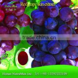 100% Red grape skin extract, grape skin extract , grape powder extract - Manufactured by NutraMax