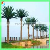 15m Outdoor Decorative Artificial Tree For Palm Tree Large Landscape Tree Date Palm Customized Phoenix Dactylifera