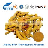Turmeric extract/free sample FDA HACCP KOSHER China supplier HPLC 95% Curcuminoids /turmeric root extract pure curcumin