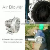 ECO Air blowers/pumps-- Regenerative Blowers/Oxygen Flow Meter Manifold/Rotary Vane Compressors