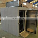 Commercial Fish Shock Freezer for Quick Freezing