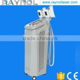 2 Handles Cellulite Reduction Body Shaping Beauty Machine Cryolipolysis CE Certificate Fat Reduce