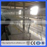 Guangzhou Poultry Farming Equipment Chicken Use Broiler Farm Chicken Cage(Guangzhou Factory)