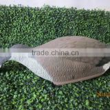 plastic goose shell decoy ,hunting goose shell decoy with stick ,feeding goose shell decoy,Canada goose shell,grey goose shell