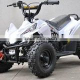 CE Adult 48V 1000W Electric ATV