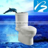 Ceramic Two Piece Sanitary Ware Toilet Product For Sale