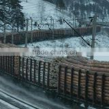Wood round logs /Timber Log / Sawlogs / RUSSIAN ORIGIN
