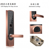 Korea South Market Convenience Goods Biometric Door Lock (Skype:bessie_wu077)
